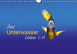 Das Unterwasser Leben (1) (Wandkalender 2019 DIN A4 quer) von Mende,  Marcel