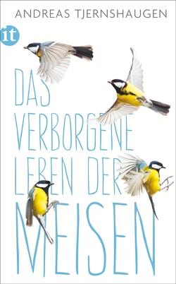 Das verborgene Leben der Meisen von Berf,  Paul, Tjernshaugen,  Andreas