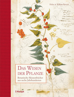 Das Wesen der Pflanze von Bynum,  Helen, Bynum,  William, Krabbe,  Wiebke