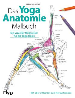 Das Yoga-Anatomie-Malbuch von Solloway,  Kelly, Stutzman,  Samantha