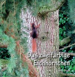 Das zweifarbige Eichhörnchen von Braun,  Helga