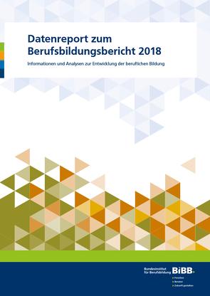 Datenreport zum Berufsbildungsbericht 2018 von Friedrich,  Michael