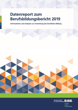 Datenreport zum Berufsbildungsbericht 2019
