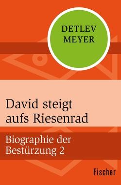 David steigt aufs Riesenrad von Meyer,  Detlev