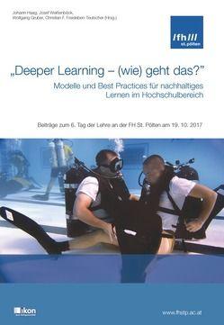 """""""Deeper Learning – (wie) geht das?"""" Modelle und Best Practices für nachhaltiges Lernen im Hochschulbereich von Freisleben-Teutscher,  Christian F., Gruber,  Wolfgang, Haag,  Johann, Weissenböck,  Josef"""