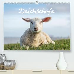 Deichschafe (Premium, hochwertiger DIN A2 Wandkalender 2020, Kunstdruck in Hochglanz) von Giesers,  Stephan