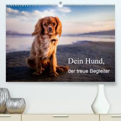 Dein Hund der treue Begleiter (Premium, hochwertiger DIN A2 Wandkalender 2020, Kunstdruck in Hochglanz) von Gayde,  Frank