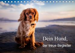 Dein Hund der treue Begleiter (Tischkalender 2019 DIN A5 quer) von Gayde,  Frank