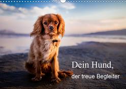Dein Hund der treue Begleiter (Wandkalender 2019 DIN A3 quer) von Gayde,  Frank