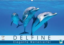 Delfine: Elegante Wellenreiter (Premium, hochwertiger DIN A2 Wandkalender 2020, Kunstdruck in Hochglanz) von CALVENDO
