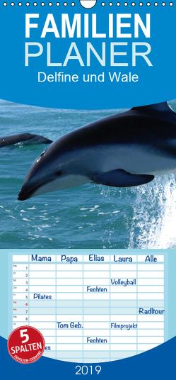 Delfine und Wale – Familienplaner hoch (Wandkalender 2019 , 21 cm x 45 cm, hoch) von Stanzer,  Elisabeth
