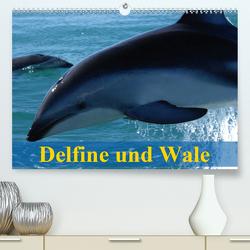 Delfine und Wale (Premium, hochwertiger DIN A2 Wandkalender 2020, Kunstdruck in Hochglanz) von Stanzer,  Elisabeth