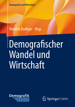 Demografischer Wandel und Wirtschaft von Budliger,  Hendrik