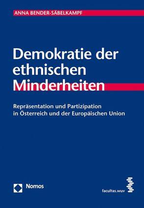Demokratie der ethnischen Minderheiten von Bender-Säbelkampf,  Anna