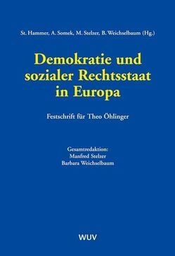 Demokratie und sozialer Rechtsstaat in Europa von Hammer,  Stefan, Somek,  Alexander, Stelzer,  Manfred, Weichselbaum,  Barbara