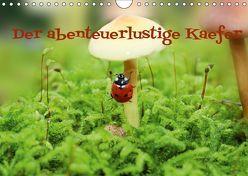 Der abenteuerlustige Käfer (Wandkalender 2019 DIN A4 quer) von Hultsch,  Heike