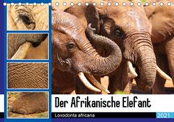 Der Afrikanische Elefant – Loxodonta africana (Tischkalender 2021 DIN A5 quer) von Fraatz,  Barbara
