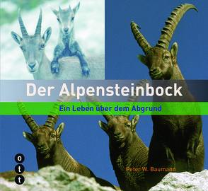 Der Alpensteinbock von Baumann,  Peter W