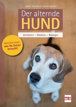 Der alternde Hund von Schroeder,  Bernd, Strodtbeck,  Sophie