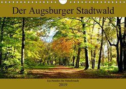 Der Augsburger Stadtwald – Ein Paradies für Naturfreunde (Wandkalender 2019 DIN A4 quer) von Lutzenberger,  Monika