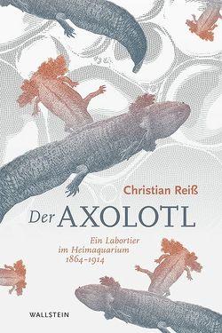 Der Axolotl von Reiß,  Christian