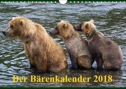 Der Bärenkalender 2018 CH-Version (Wandkalender 2018 DIN A4 quer) von Steinwald,  Max