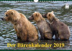 Der Bärenkalender 2019 (Wandkalender 2019 DIN A4 quer) von Steinwald,  Max