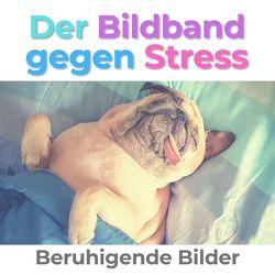 Der Bildband gegen Stress von Hübsch,  Bibi