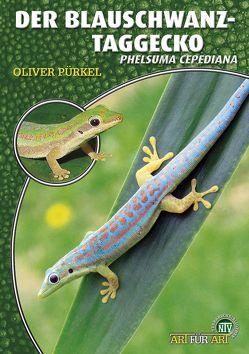 Der Blauschwanz-Taggecko von Pürkel,  Oliver