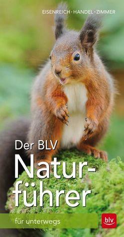 Der BLV Naturführer von Eisenreich,  Wilhelm, Handel,  Alfred, Zimmer,  Ute E.