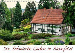 Der Botanische Garten in Bielefeld (Wandkalender 2018 DIN A4 quer) von Bücker,  Michael