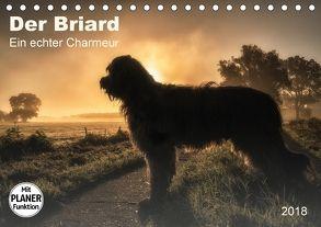 Der Briard 2018 – Ein echter Charmeur (Tischkalender 2018 DIN A5 quer) von Teßen,  Sonja