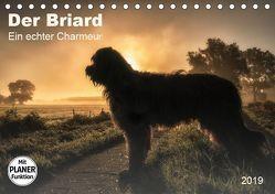 Der Briard 2019 – Ein echter Charmeur (Tischkalender 2019 DIN A5 quer) von Teßen,  Sonja