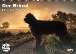 Der Briard 2019 – Ein echter Charmeur (Wandkalender 2019 DIN A2 quer) von Teßen,  Sonja