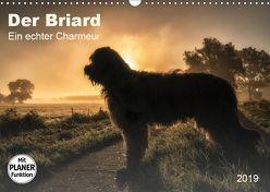 Der Briard 2019 – Ein echter Charmeur (Wandkalender 2019 DIN A3 quer) von Teßen,  Sonja