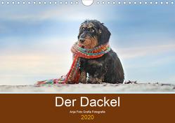 Der Dackel (Wandkalender 2019 DIN A4 quer) von Foto Grafia Fotografie,  Anja