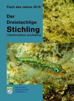 Der Dreistachlige Stichling (Gasterosteus aculeatus)