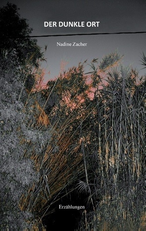 Der dunkle Ort von Zacher,  Nadine