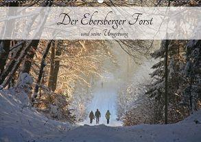 Der Ebersberger Forst und seine Umgebung (Wandkalender 2018 DIN A2 quer) von Bildarchiv,  Geotop