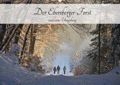 Der Ebersberger Forst und seine Umgebung (Wandkalender 2019 DIN A2 quer) von Bildarchiv,  Geotop