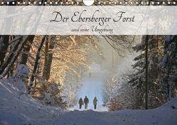 Der Ebersberger Forst und seine Umgebung (Wandkalender 2019 DIN A4 quer) von Bildarchiv,  Geotop