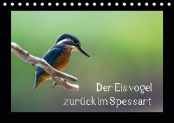 Der Eisvogel zurück im Spessart (Tischkalender 2019 DIN A5 quer) von Reibert,  Björn