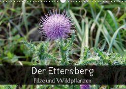 Der Ettersberg – Pilze und Wildpflanzen (Wandkalender 2018 DIN A3 quer) von Schachtschabel,  Jan
