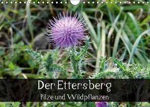 Der Ettersberg – Pilze und Wildpflanzen (Wandkalender 2018 DIN A4 quer) von Schachtschabel,  Jan