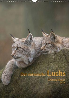 Der eurasische Luchs (Wandkalender 2018 DIN A3 hoch) von Becker,  Eberhard