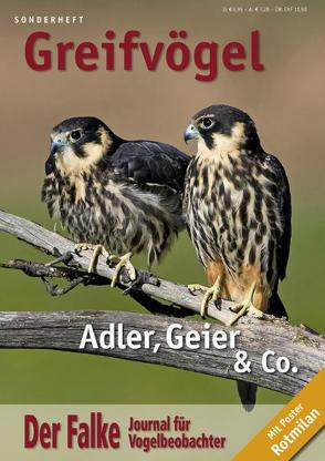 Der Falke – Sonderheft Greifvögel von Redaktion Der Falke