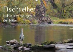 Der Fischreiher im Naturschutzgebiet der Nahe (Wandkalender 2019 DIN A2 quer)