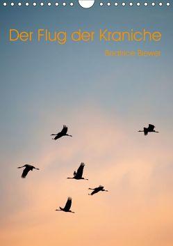 Der Flug der Kraniche (Wandkalender 2019 DIN A4 hoch) von Biewer,  Beatrice