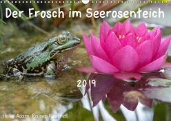 Der Frosch im Seerosenteich (Wandkalender 2019 DIN A3 quer) von Adam,  Heike, Kauffelt,  Rainer