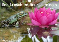 Der Frosch im Seerosenteich (Wandkalender 2019 DIN A4 quer) von Adam,  Heike, Kauffelt,  Rainer